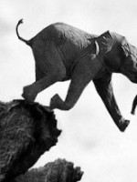 elephant off cliff 150x200 Where is the Democrat solution for avoiding the fiscal cliff?