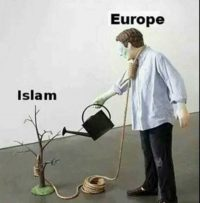 europe-grows-islam