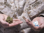 Vets-weed or pills